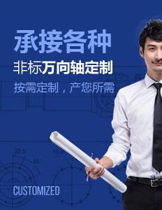 承接各zhong非标wan向轴定制
