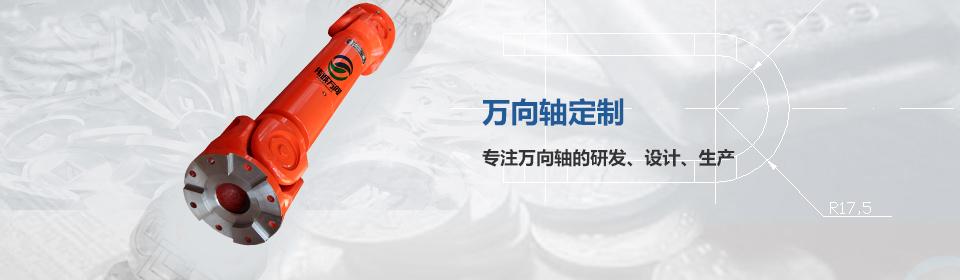 wanxiang轴定制